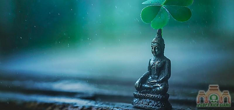 Vì Sao Tôi Theo Đạo Phật ?