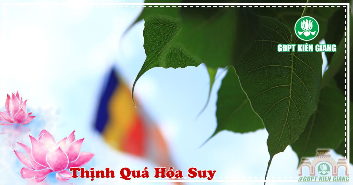 Thinh Qua Hoa Suy 2